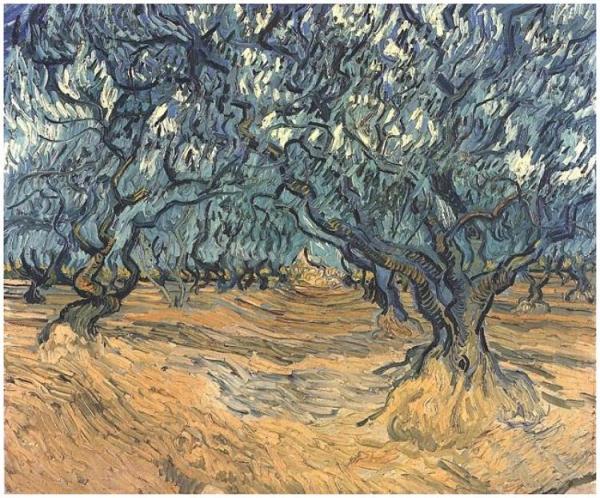 olive-trees-van-gogh